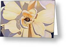 Front And Center Greeting Card