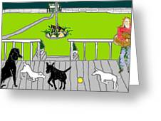 Front Porch Fun Greeting Card
