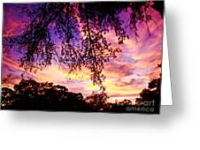 Front Yard Sunset 2 Greeting Card
