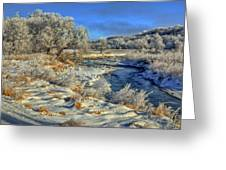 Frost Along The Creek Greeting Card