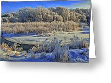 Frost Along The Creek - Panorama Greeting Card