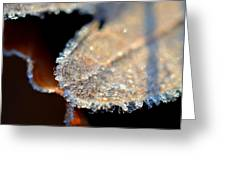 Frost Diamonds Greeting Card