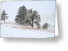 Frost . Fog And Twenty Below ... Montana Art Photo Greeting Card
