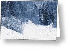 Frost Path Greeting Card