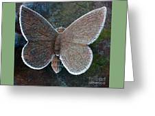 Frosted Butterfly Greeting Card by Kathy DesJardins