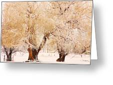 Frosted Golden Trees Greeting Card