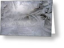 Frosted Pane Greeting Card