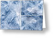 Frostwork ...2584 Greeting Card