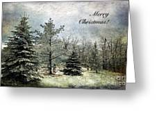 Frosty Christmas Card Greeting Card