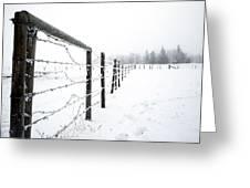 Frosty Fenceline Greeting Card