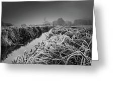 Frosty Field Greeting Card
