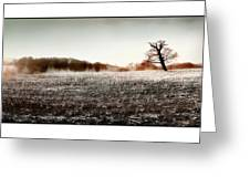 Frosty Landscape Greeting Card