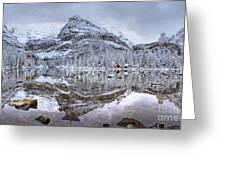 Frosty Morning In Pano Greeting Card