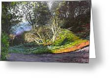 Frosty Morning Near Nant Clwyd, North Wales Greeting Card