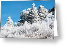 Frosty Mountainside Greeting Card