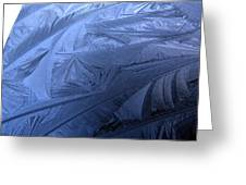 Frosty Palm Tree Fronds On Car Trunk Greeting Card