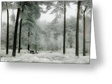 Frosty Paradise Greeting Card