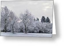 Frosty Park Greeting Card
