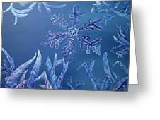 Frosty Window Greeting Card