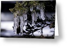 Frozen 4 Greeting Card