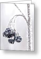 Frozen Berries Greeting Card