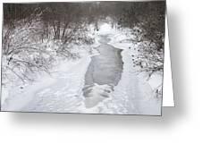Frozen Brook Greeting Card