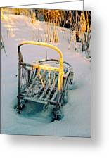 Frozen Dogsled Greeting Card