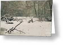 Frozen Fallen Wide Greeting Card
