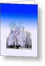 Frozen Fog Greeting Card