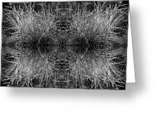 Frozen Grass Abstract In Bw Greeting Card