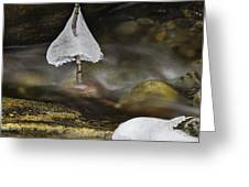 Frozen Ice Bells Greeting Card by Ken Barrett