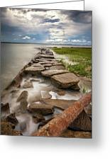Frozen In Time - Sullivan's Island, Sc Greeting Card