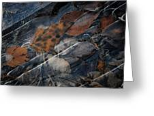 Frozen Leaves In Fall Greeting Card