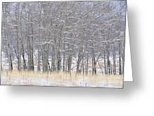 Frozen Limbs Greeting Card