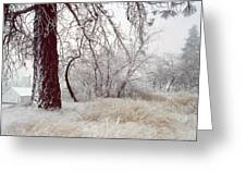 Frozen Morning In Palouse Greeting Card