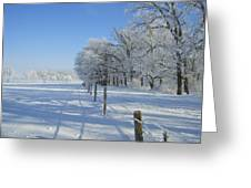 Frozen Mystery Greeting Card