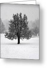 Frozen One No2 Greeting Card