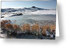 Frozen Pond Greeting Card