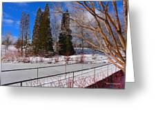 Frozen Pond / Chicago Botanic Garden Greeting Card