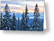 Frozen Reflection 2 Greeting Card