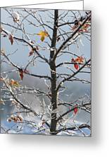 Frozen Remnants Greeting Card