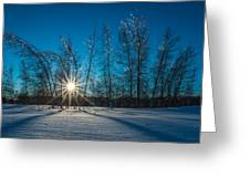 Frozen Trees Under A Winter Sunset Greeting Card