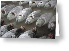 Frozen Tuna Fish At The Tsukiji Greeting Card