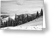 Frozen Valley 4 Bw  Greeting Card
