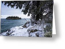 Frozen View Of Ellingson Island Greeting Card