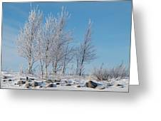 Frozen Views 2 Greeting Card