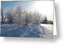Frozen Views 3 Greeting Card