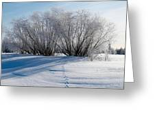 Frozen Views 4 Greeting Card