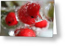 Frozen Winter Berries Greeting Card