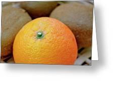 Fruit Basket. Orange. Greeting Card